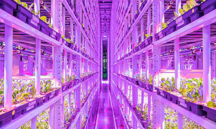 Indoor Vertical Farming – Potential To Disrupt Agriculture