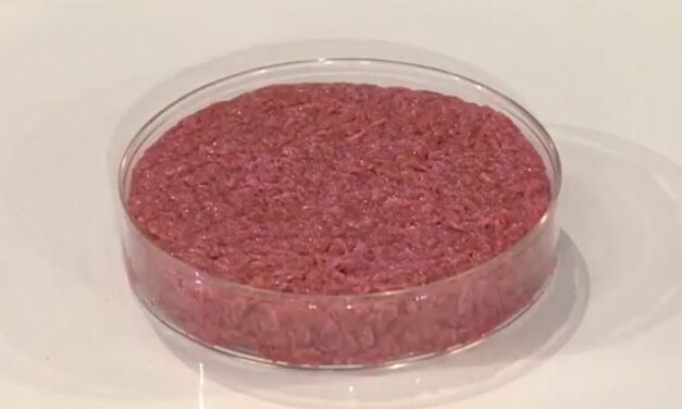 How Cultured Meat Could Revolutionize The Food Industry
